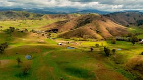 Rural / Farming commercial property for sale at 400 Horse Creek Road Jingellic NSW 2642