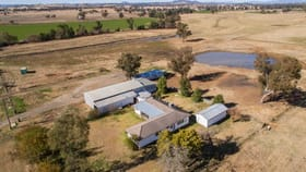 Rural / Farming commercial property for sale at Lot 272 Newmans Lane Tamworth NSW 2340
