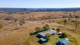 Rural / Farming commercial property for sale at 341 Bowman Road Taromeo QLD 4314