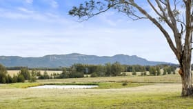 Rural / Farming commercial property for sale at Pokolbin NSW 2320