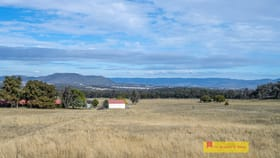 Rural / Farming commercial property for sale at 43 Spring View  Lane Mudgee NSW 2850
