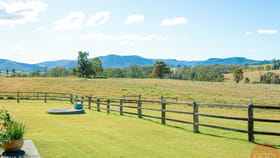 Rural / Farming commercial property for sale at 366B Mcmullins Road Branxton NSW 2335