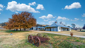 Rural / Farming commercial property for sale at 1789 O'Connell Road O'connell NSW 2795