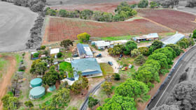 Rural / Farming commercial property for sale at 533 Moculta Road Penrice SA 5353