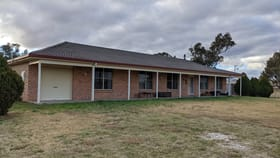 Rural / Farming commercial property for sale at 163 Narrango Rd Rylstone NSW 2849