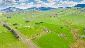 Rural / Farming commercial property for sale at 316 RIVER ROAD Welaregang NSW 2642