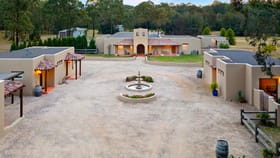 Rural / Farming commercial property for sale at 657 McDonalds Road Pokolbin NSW 2320