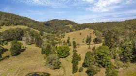 Rural / Farming commercial property for sale at 139 Upper Eel Creek Road Langshaw QLD 4570