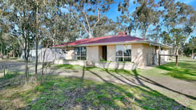 Rural / Farming commercial property for sale at 249 Belvidere Road Nuriootpa SA 5355