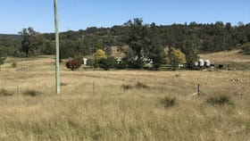 Rural / Farming commercial property for sale at 1311 Giants Creek Road Giants Creek NSW 2328