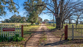 Rural / Farming commercial property for sale at 917 Burrendong Way Orange NSW 2800