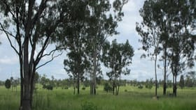 Rural / Farming commercial property for sale at Lot 14, 107 Corduroy Creek Road Collinsville QLD 4804