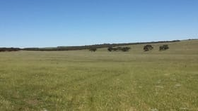 Rural / Farming commercial property for sale at Lot 5 Cockshell Road Bowhill SA 5238