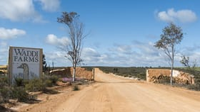 Rural / Farming commercial property for sale at 208 KOONAH ROAD Badgingarra WA 6521