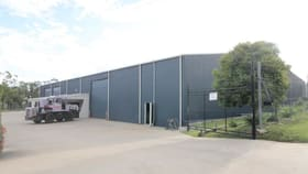 Industrial / Warehouse commercial property for lease at Shed A  17 BUSH CRESCENT Parkhurst QLD 4702