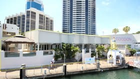 Hotel, Motel, Pub & Leisure commercial property for lease at Lot 2/58 Cavill Avenue Surfers Paradise QLD 4217