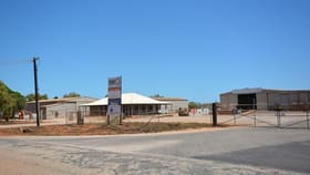 Factory, Warehouse & Industrial commercial property for lease at 18 McDaniel Road Minyirr WA 6725