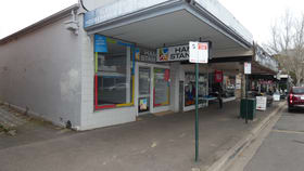Medical / Consulting commercial property for lease at 182 Barker Street Castlemaine VIC 3450