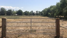 Rural / Farming commercial property for lease at Cranfield Paddocks Raworth Street Singleton NSW 2330