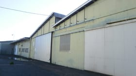 Factory, Warehouse & Industrial commercial property for lease at 00 Napier Street Shed Dalby QLD 4405