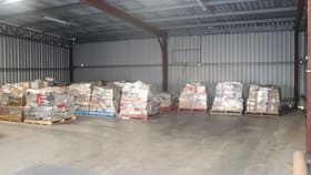 Showrooms / Bulky Goods commercial property for lease at Bay 2/47 Muldoon Street Taree NSW 2430