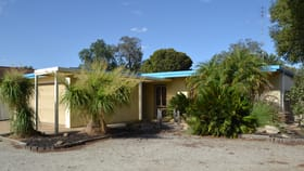 Medical / Consulting commercial property for lease at 36 Francis Street Echuca VIC 3564