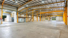 Factory, Warehouse & Industrial commercial property for lease at Lot 50 Newbridge Road Berkeley Vale NSW 2261