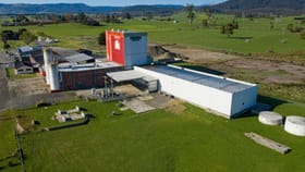 Rural / Farming commercial property for lease at 999 Main Road Legerwood TAS 7263