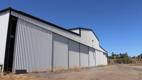 Rural / Farming commercial property for lease at Shed 1/685 Kingsthorpe Haden Road Yalangur QLD 4352