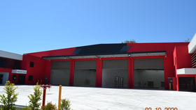Showrooms / Bulky Goods commercial property for lease at 20 Technology Drive Arundel QLD 4214