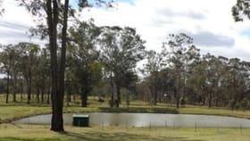 Rural / Farming commercial property for lease at 388 Quorrobolong Road Quorrobolong NSW 2325
