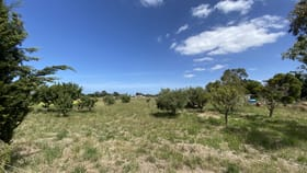 Rural / Farming commercial property for lease at 5 Apollo Drive Lara VIC 3212