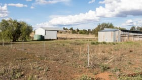 Development / Land commercial property for lease at 56-66 Thomas Street Parkes NSW 2870