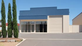 Factory, Warehouse & Industrial commercial property for lease at 64A Chris Collins Court Murray Bridge SA 5253