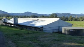 Rural / Farming commercial property for lease at 1036B Mountain Top  Road Stony Chute NSW 2480