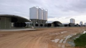 Rural / Farming commercial property for sale at 4755 Golden Valley Hwy Murchison East VIC 3610