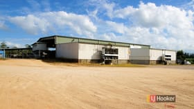 Rural / Farming commercial property for sale at 253 North Davidson Road Munro Plains QLD 4854