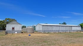 Other commercial property for sale at 51 Morrissey Street Merrigum VIC 3618
