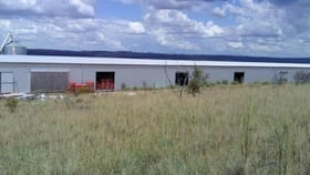 Rural / Farming commercial property for sale at 2183 Black Stumpway Coolah NSW 2843