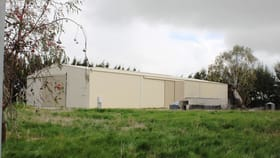 Factory, Warehouse & Industrial commercial property for sale at Ellen Street Penola SA 5277