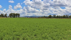 Rural / Farming commercial property sold at 0 Mt Lindesay Highway Beaudesert QLD 4285