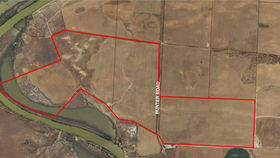 Rural / Farming commercial property for sale at Forster SA 5238