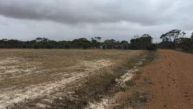 Development / Land commercial property for sale at 2 Poot Street Munglinup WA 6450