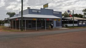 Hotel, Motel, Pub & Leisure commercial property for sale at 17 St Mary Street Isisford QLD 4731