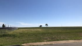 Development / Land commercial property for sale at 13 (Lot 19) HAHESY CIRCUIT Roseworthy SA 5371