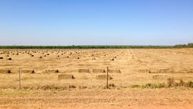 Rural / Farming commercial property for sale at 1445  Fleming Road Douglas-daly NT 0822