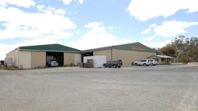 Factory, Warehouse & Industrial commercial property for sale at 211 BARHAM ROAD Deniliquin NSW 2710