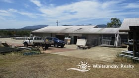 Retail commercial property for sale at 1064 Shute Harbour Road Cannon Valley QLD 4800