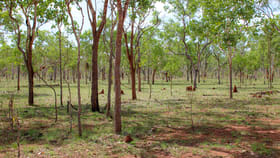 Rural / Farming commercial property for sale at 387 Edith Farms Road Katherine NT 0850