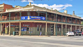 Hotel, Motel, Pub & Leisure commercial property for sale at 159 East Streeet Narrandera NSW 2700